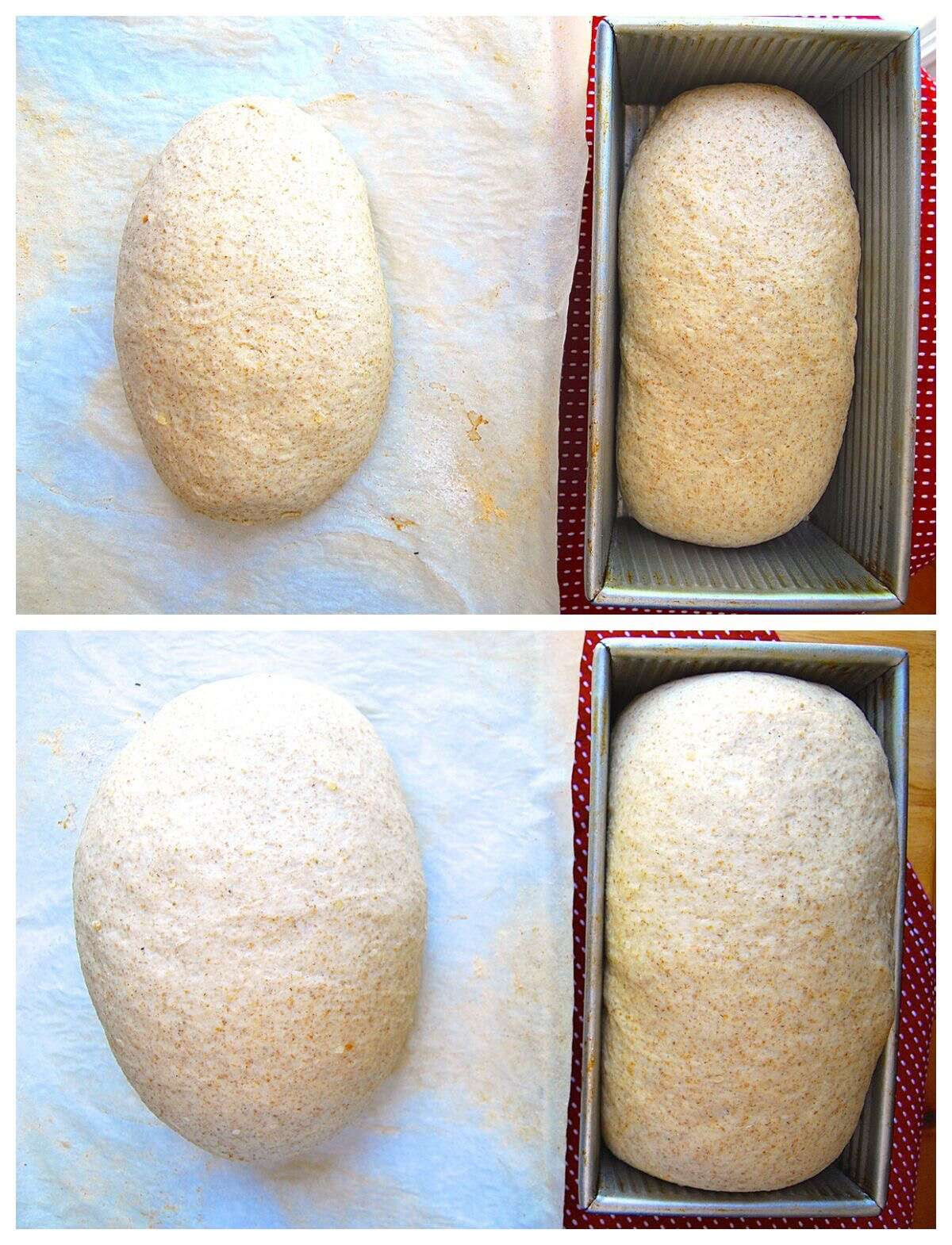 How to make Chewy Semolina Rye Bread via @kingarthurflour