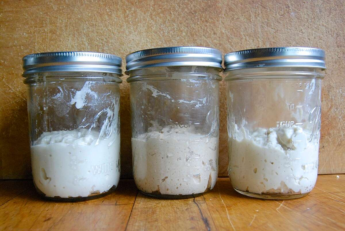 Grape sourdough starter via @kingarthurflour
