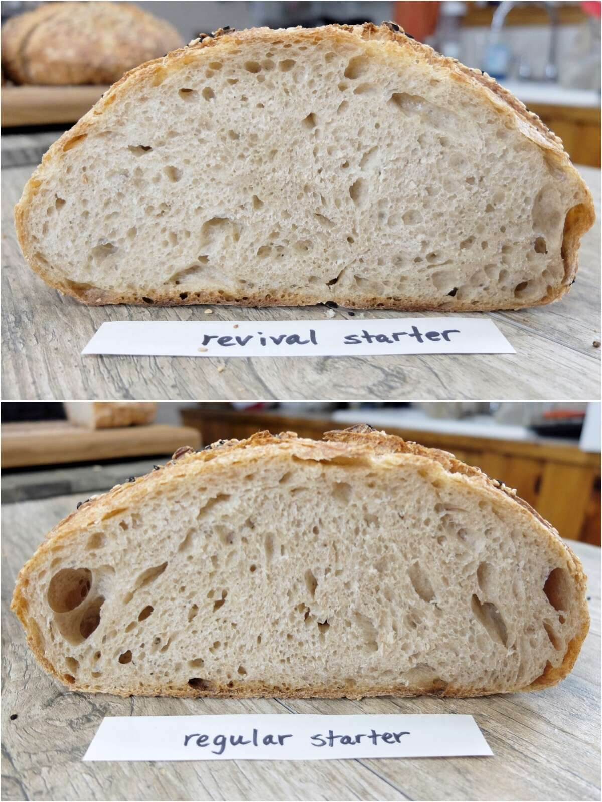 Sourdough Starter Troubleshooting, part 2 via @kingarthurflour
