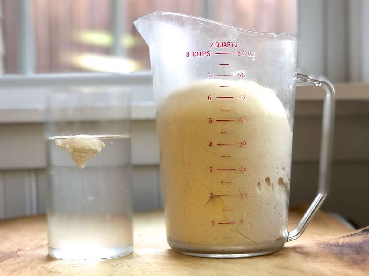 Float test for yeast dough sourdough starter via @kingarthurflour