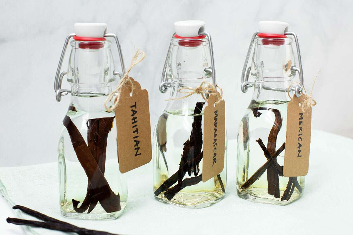 Three jars of homemade vanilla extract, ready to infuse: Tahitian, Madagascar, and Mexican vanilla extract.