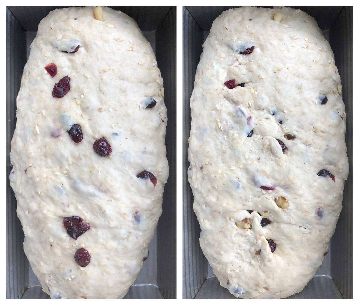 Oatmeal bread dough with cranberries and walnuts showoing how to tuck the fruit and nuts under the surface of the dough so they won't burn