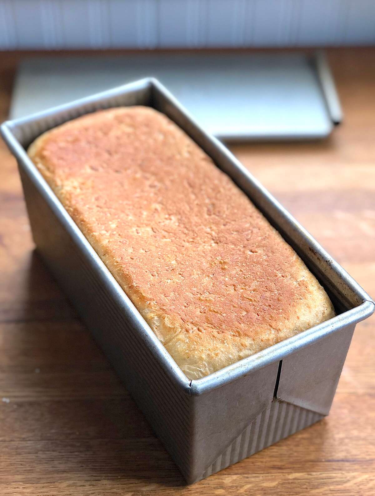 Just-baked oatmeal bread in a pain de mie loaf pan
