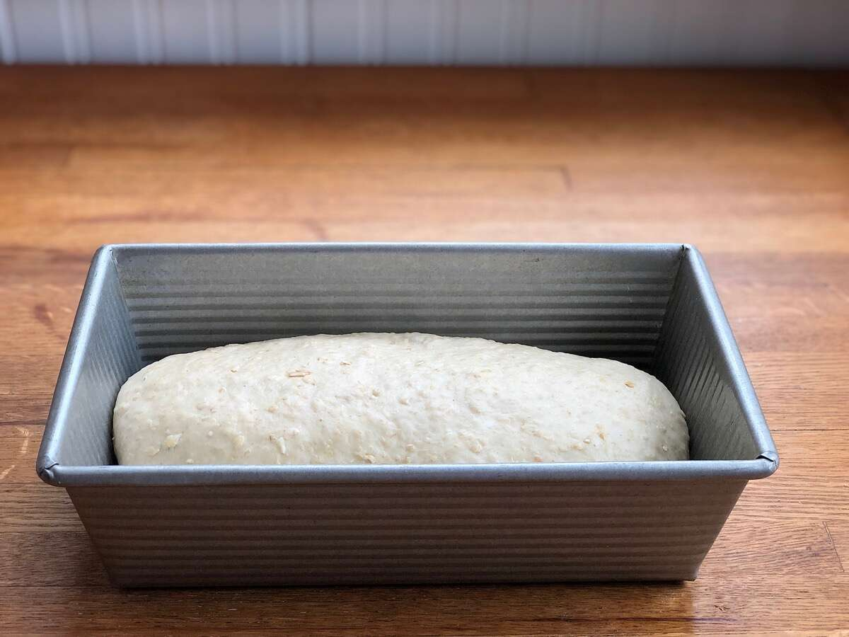 "Oatmeal bread dough, shaped and placed into a 9"" x 5"" pan to rise"