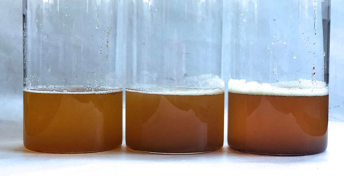 Three clear glass lab jars of liquid brown butter, showing slight differences in color.
