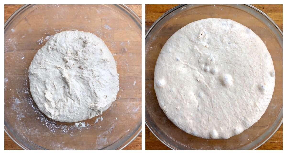 Two photos side by side: just-mixed sourdough bread dough, unrisen; and the same dough 16 hours later, doubled in size.