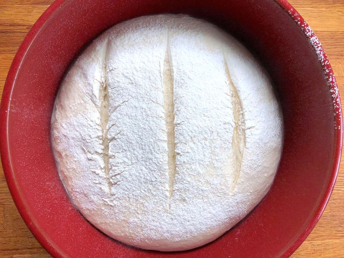 Rustic Sourdough Bread dough in a Dutch oven, slashed and ready to bake.