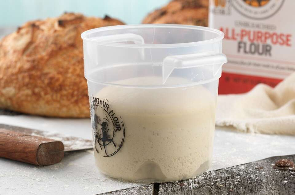 Stiff Sourdough Starter
