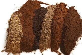 Six different cocoa powders lined up, side by side, highlight their unique shades of brown